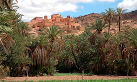 agadir to taroudant and tiout excursion